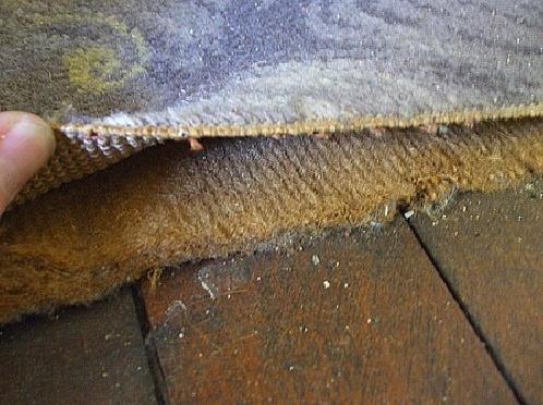Asbestos Carpet Underlay – Is the